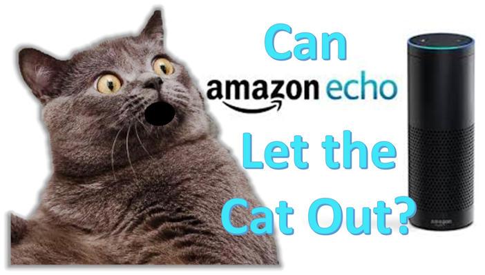 Alexa, lass die Katze rein!