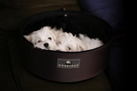 Sleepypod medium